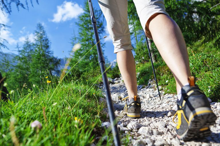 Trail Shoes and Poles on Rocky Trail