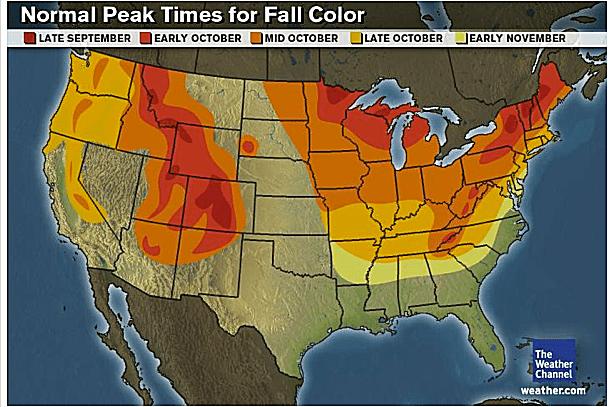 Usa Fall Foliage Map