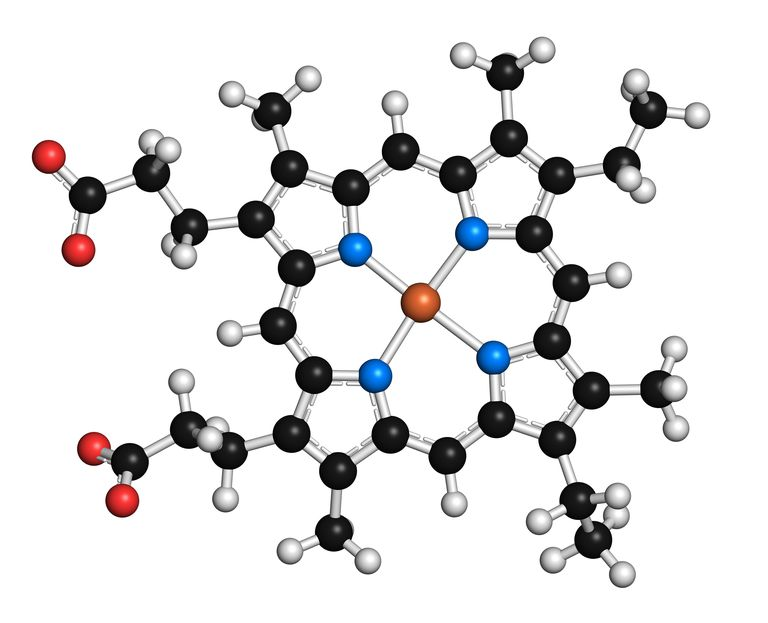 Heme is an example of a coenzyme or cofactor that contains both an organic and inorganic component.