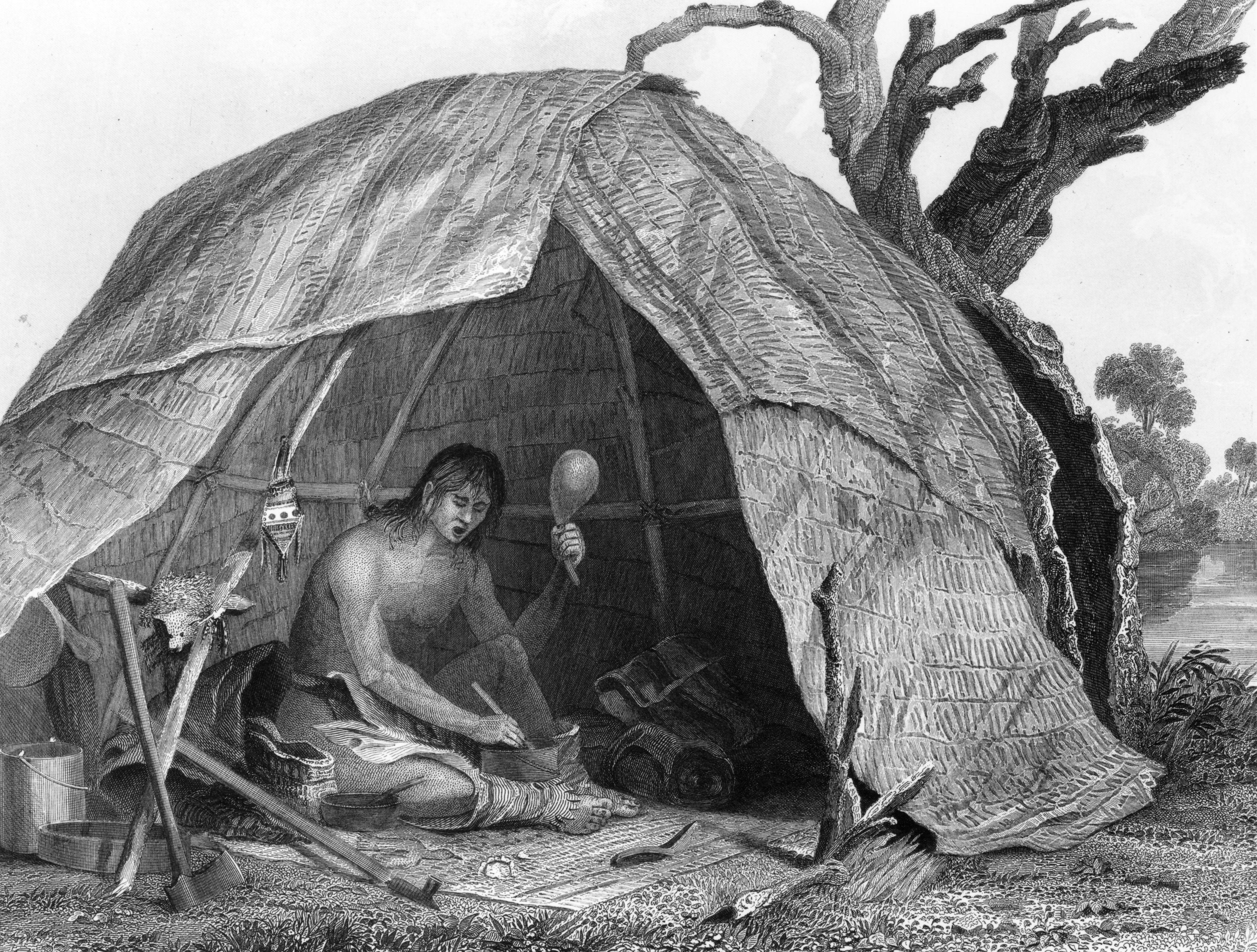 savanna totem photos and their purpose as spiritual teachers