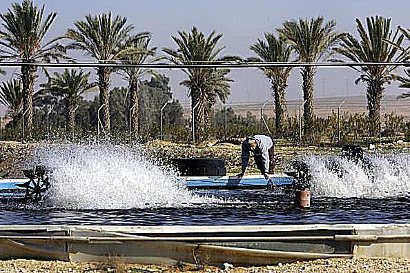 Aquifer in use in Israel