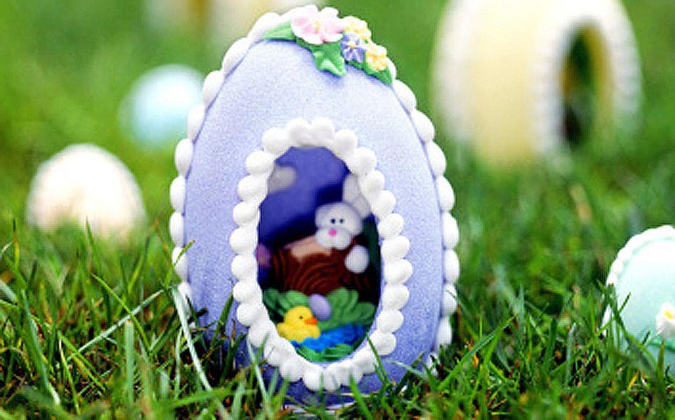 Panoramic Eggs