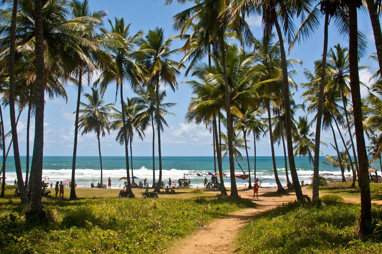 Diez Playas Para Conocer En El Nordeste De Brasil