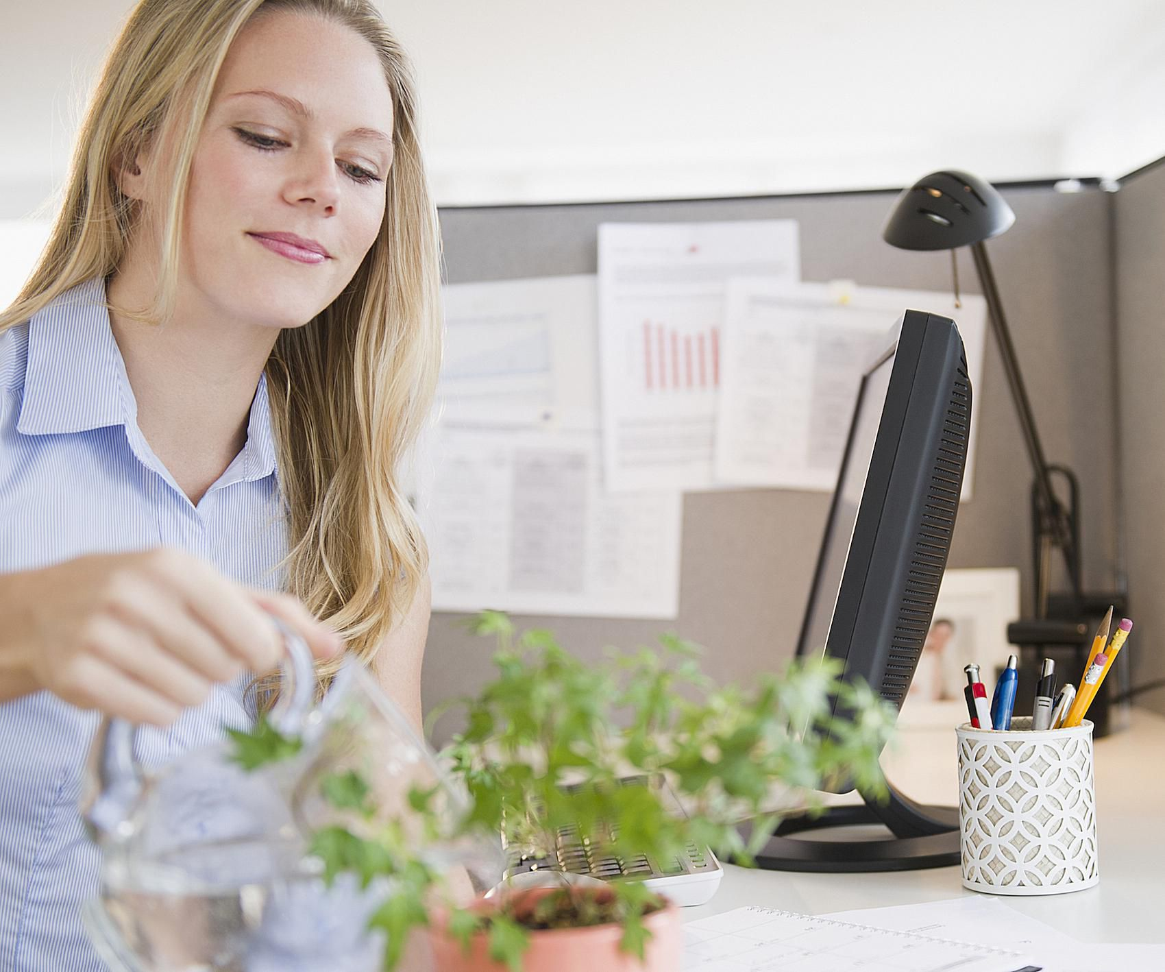 How Can I Create Good Feng Shui In My Office Cubicle?