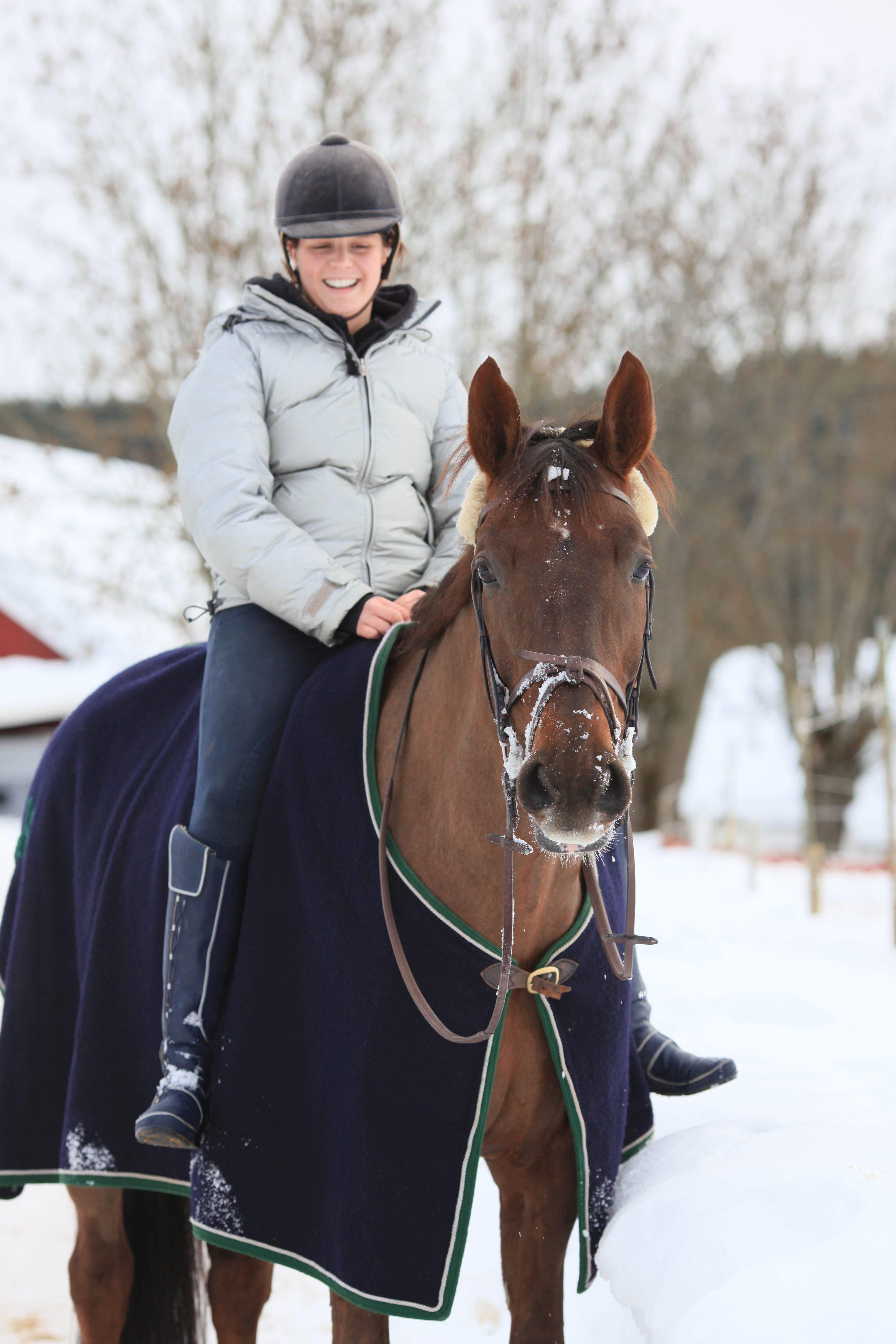 Horse Owners - Holiday and Birthday Gifts