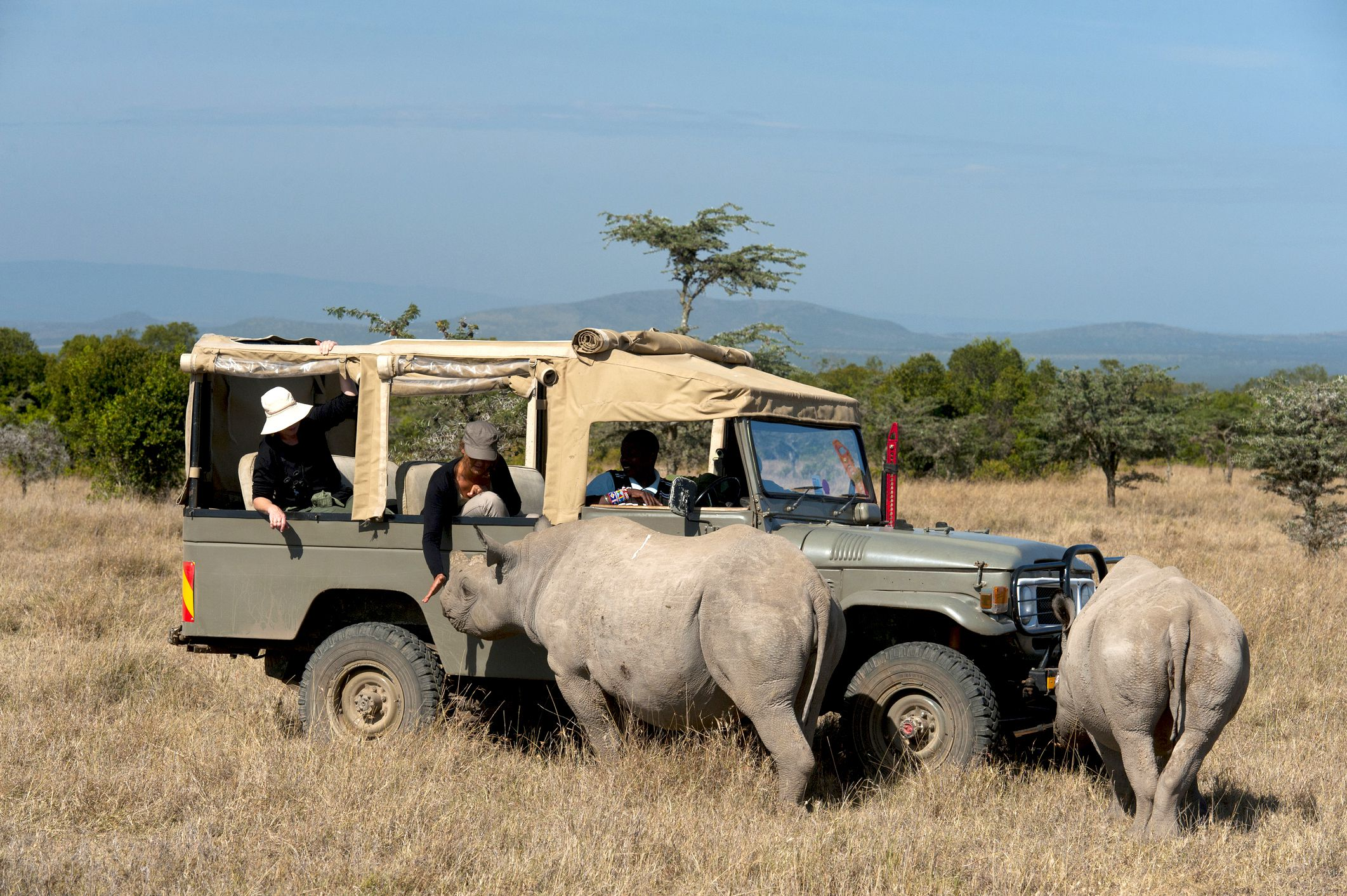 An Introduction to Safari Conservancies in Kenya