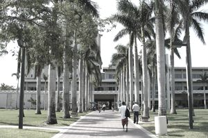 Walkway leading to the Otto G. Richter Library on the campus of the University of Miami