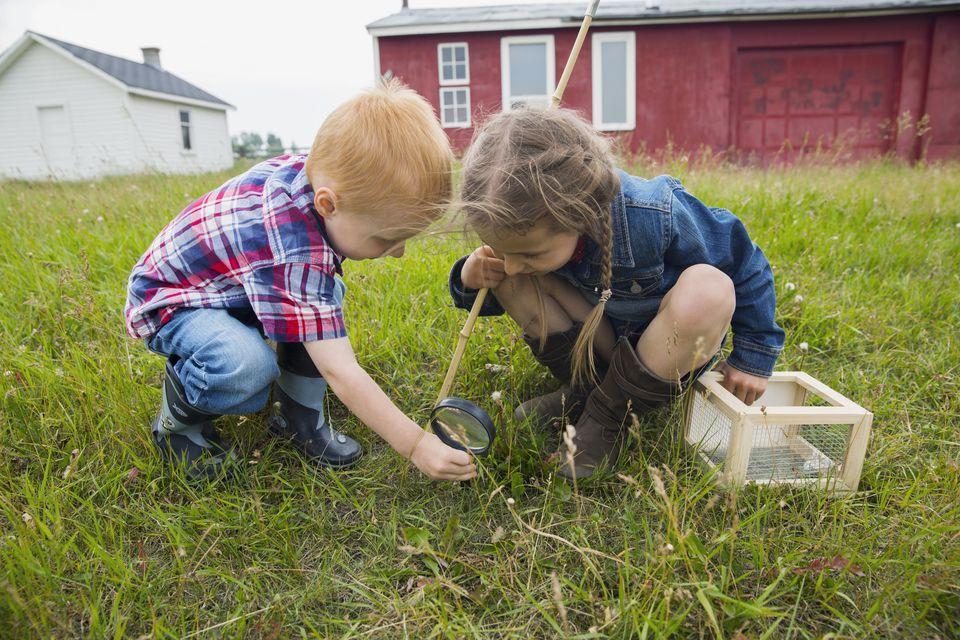 Kids inspecting grass