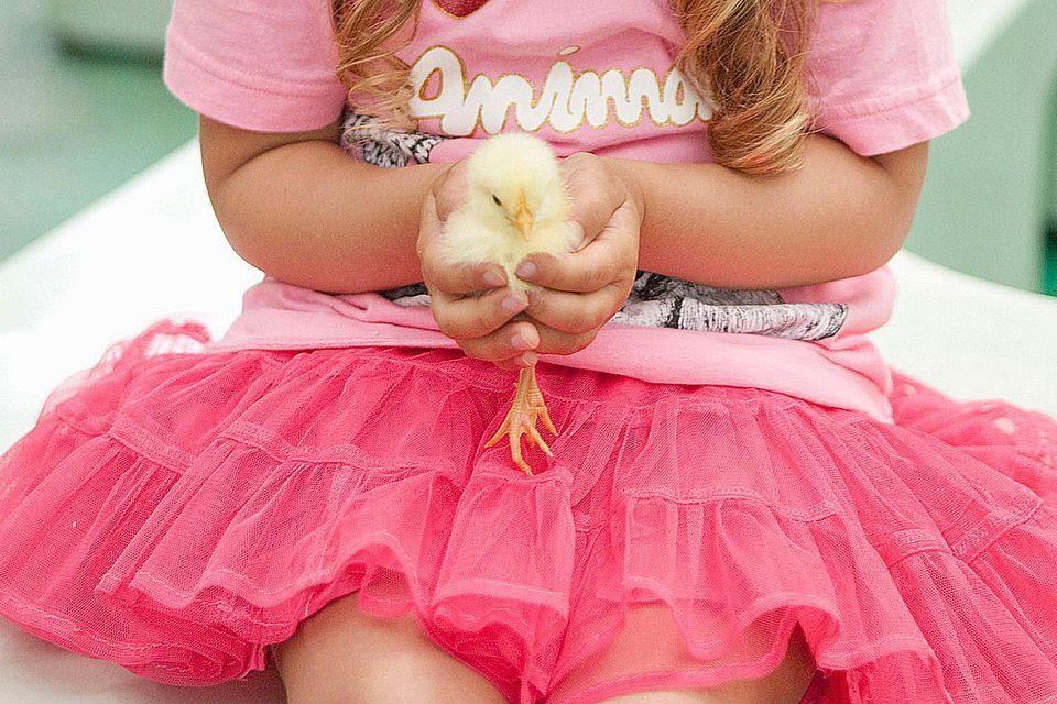 Girl Holding an Easter Chick