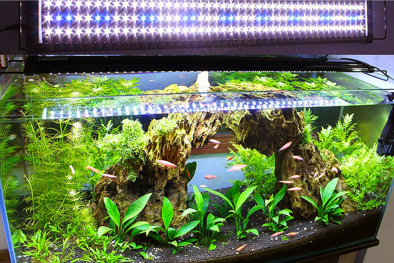 led light aquarium plants