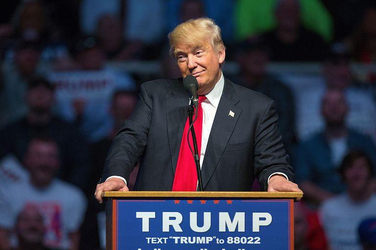 Donald Trump Campaigns
