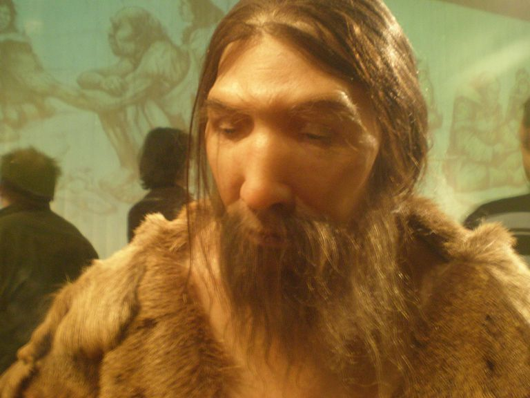 Neanderthal Reconstruction, Neanderthal Museum, Erkrath Germany