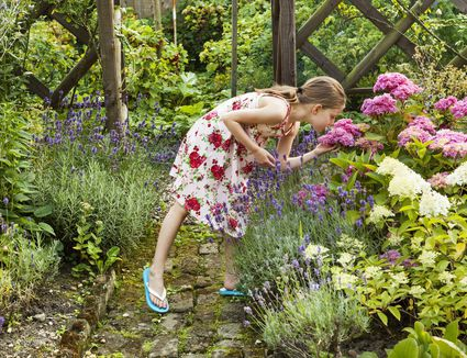 Gorgeous Ideas to Steal for Your Home Garden