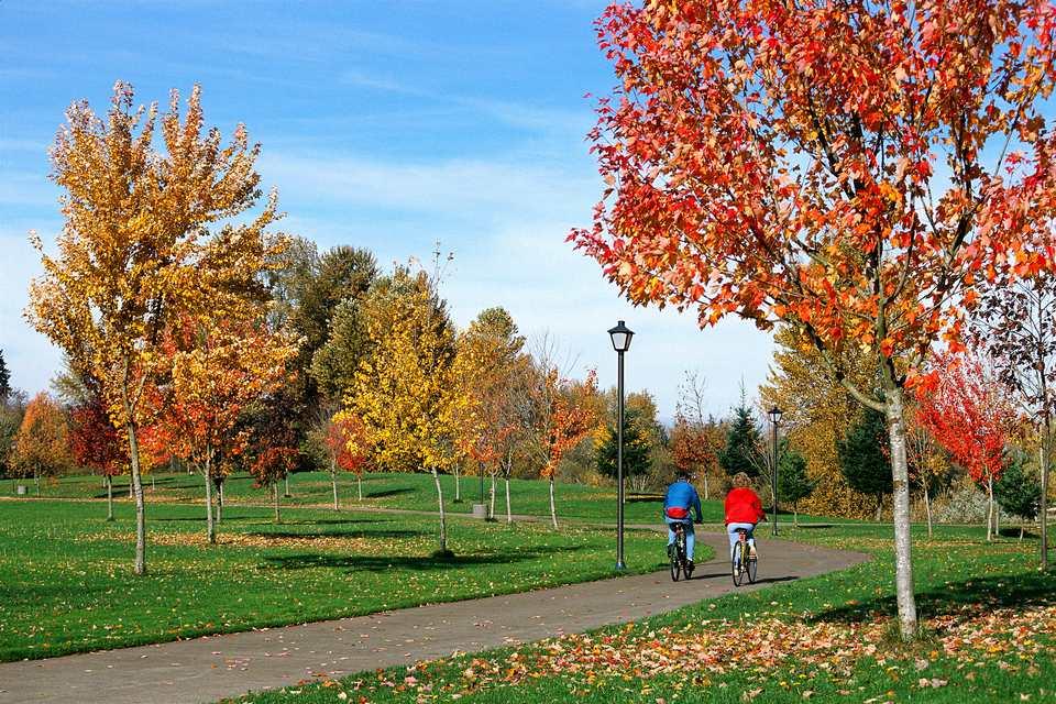 Couple Biking in a Eugene OR Park