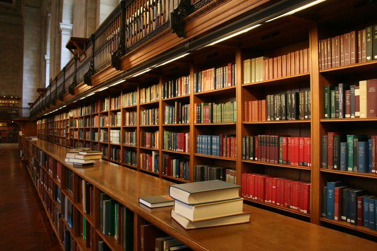 Shelves of library books.