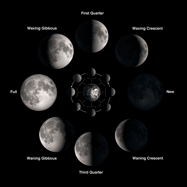 LUNAR PHASES  University of Utah