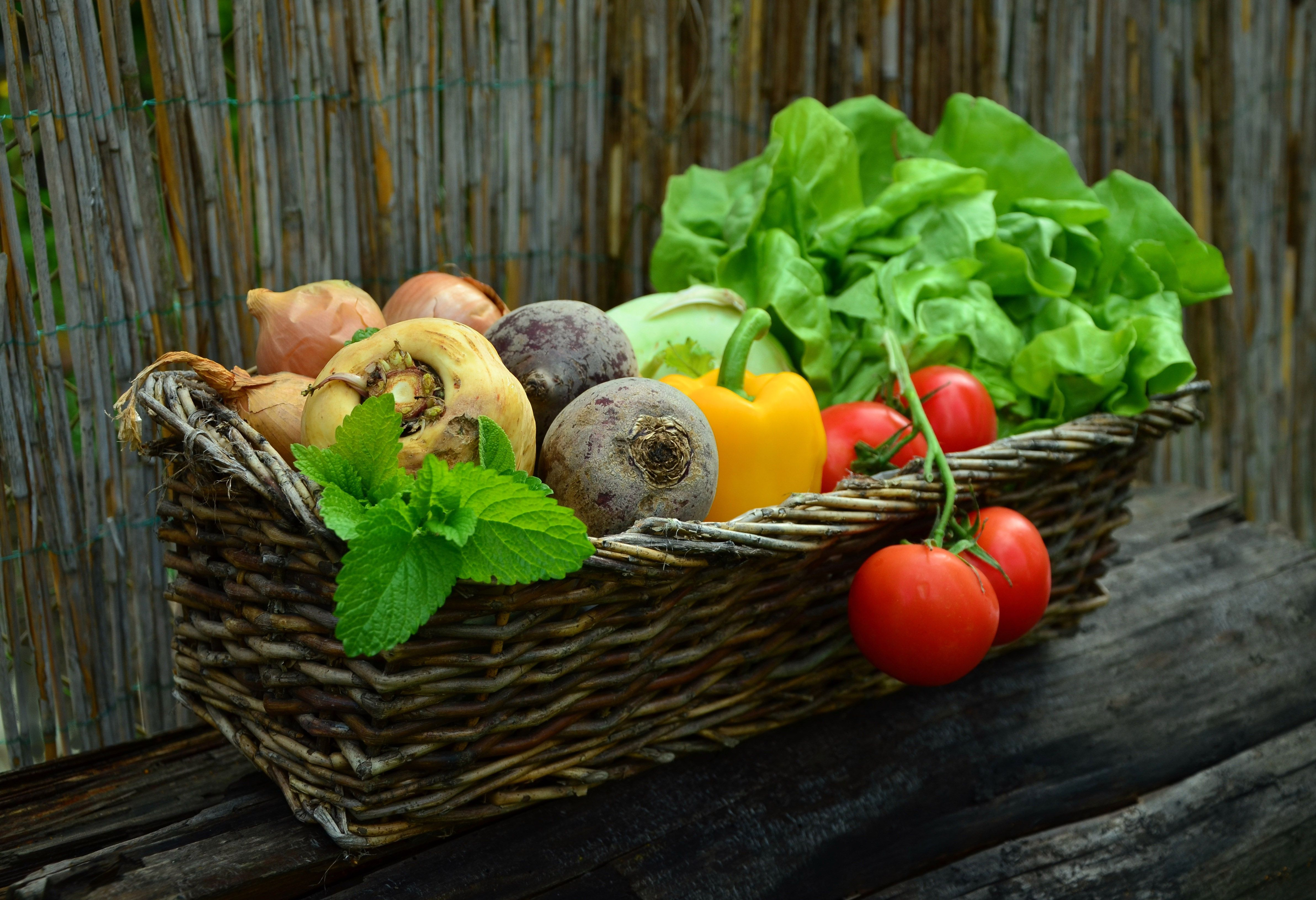 What fruits and vegetables are in season in greece and when