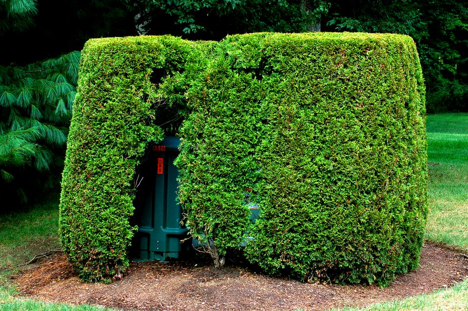 Evergreen hedge (image) hides an eyesore. Access to the utility box is provided by a hole.