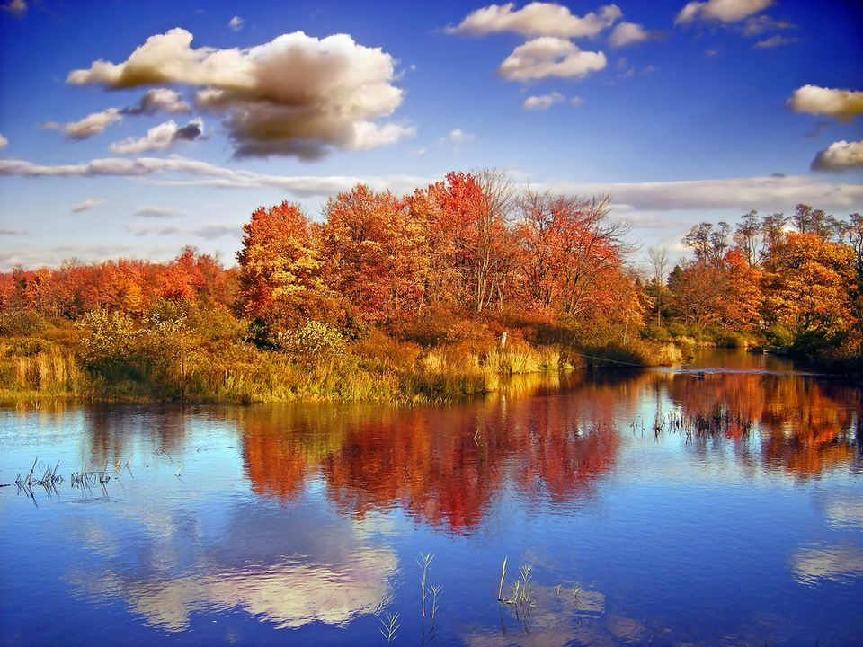 Fall In The Mid Atlantic