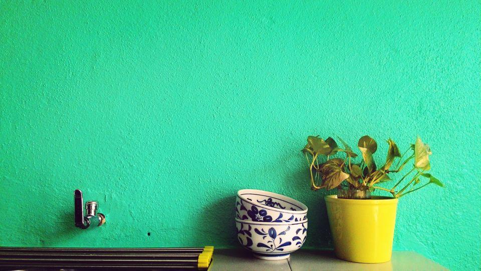 Textured green wall