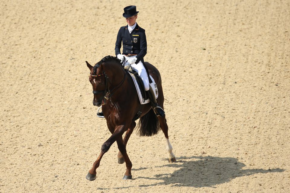 Olympische Sommerspiele London 2012 Dressage horse and rider.