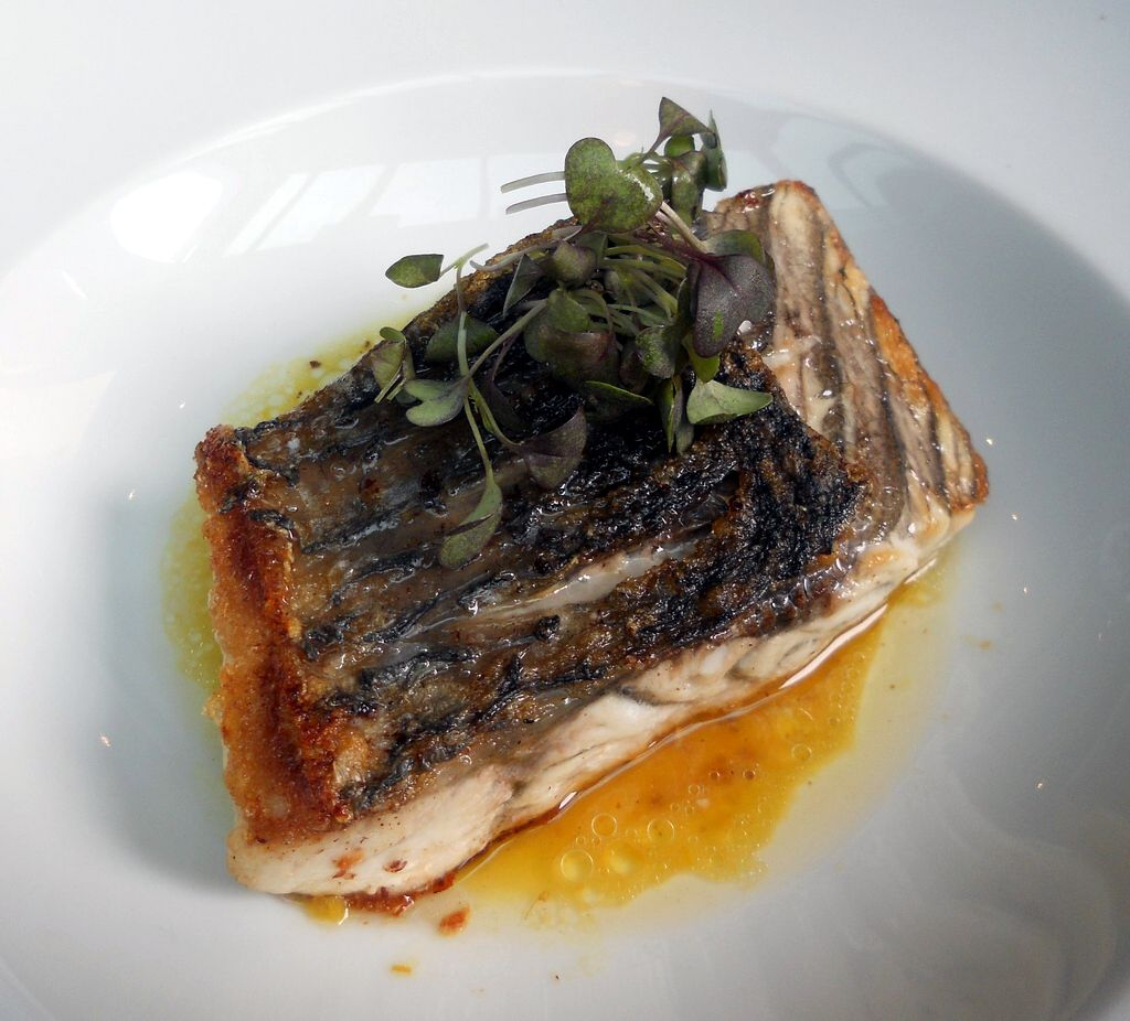 Top 10 sustainable fish choices for What does sustainable fish mean