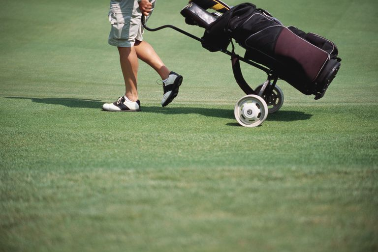 Golf Caddy Cover Letter And Resume Examples