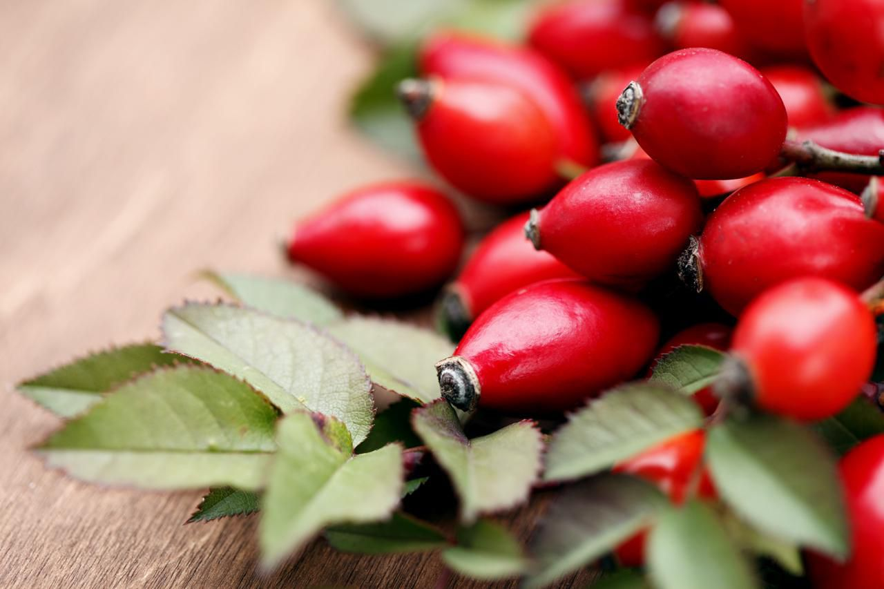 Rose Hips Puree Recipe With Drying Tips