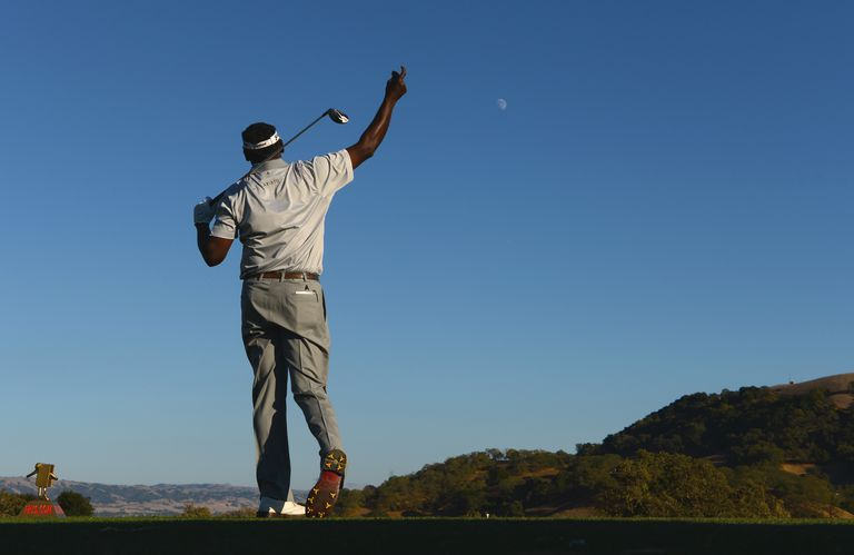 Vijay Singh points to the right, where he hit his drive