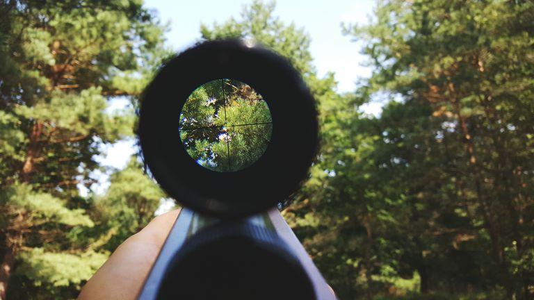 eBay auction sniping
