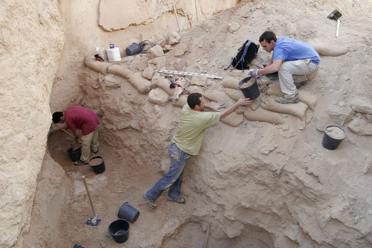 Archaeologists digging