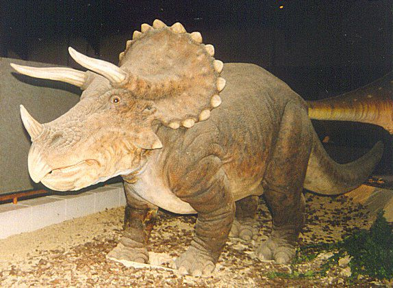 I got Triceratops. What Kind of Dinosaur Are You?