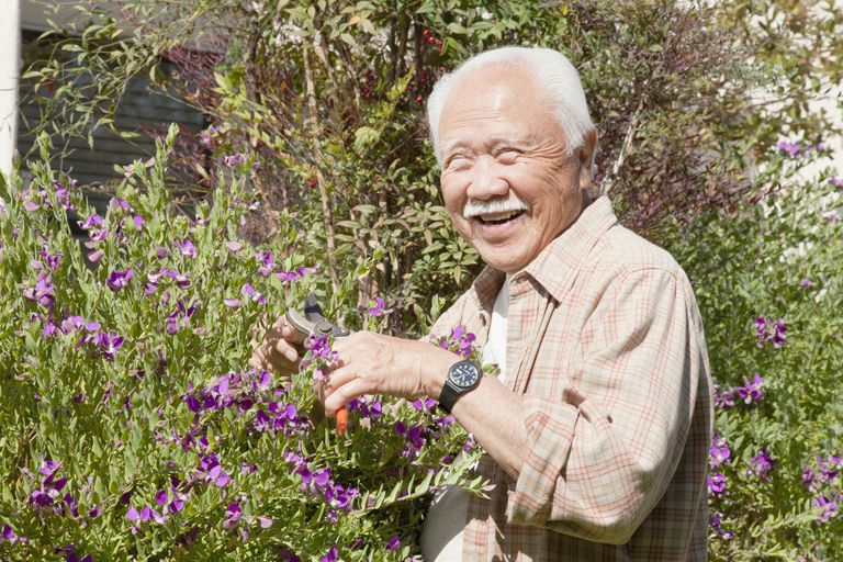 Gardening in Dementia Can Create Joy