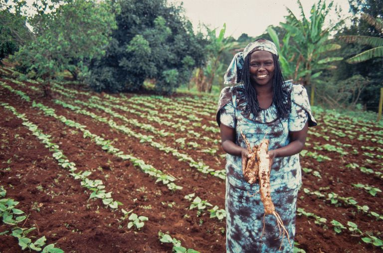 Kenyan activist Wangari Maathai