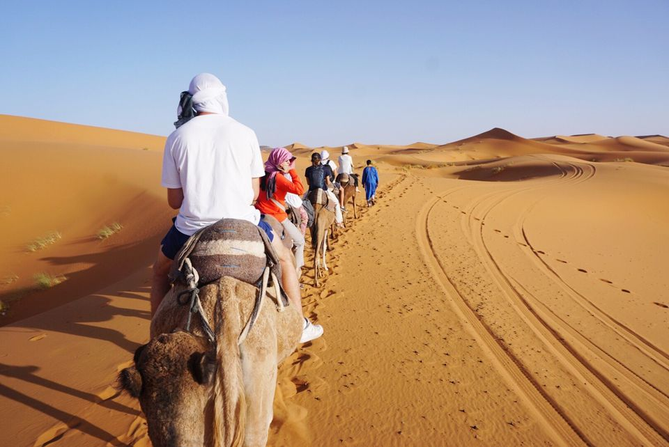 Include information on any tours you are taking in your travel itinerary.