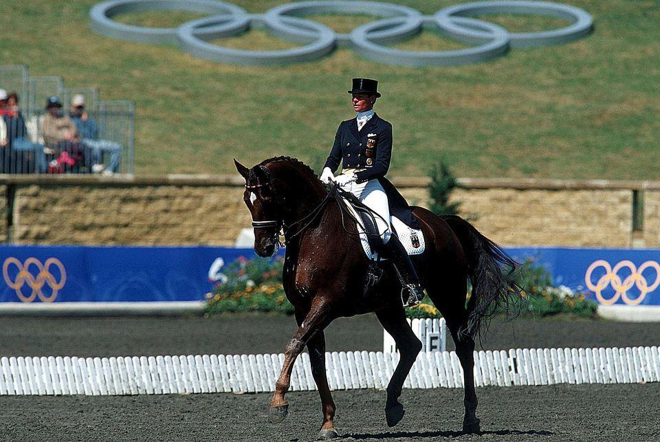 Dressage horse preforms a passage.