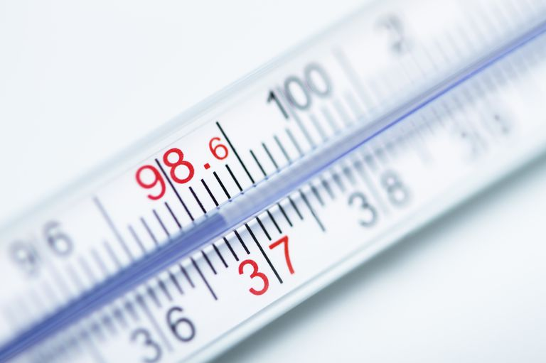 Homeostasis and body temperature