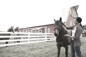 Woman grooming horse on farm