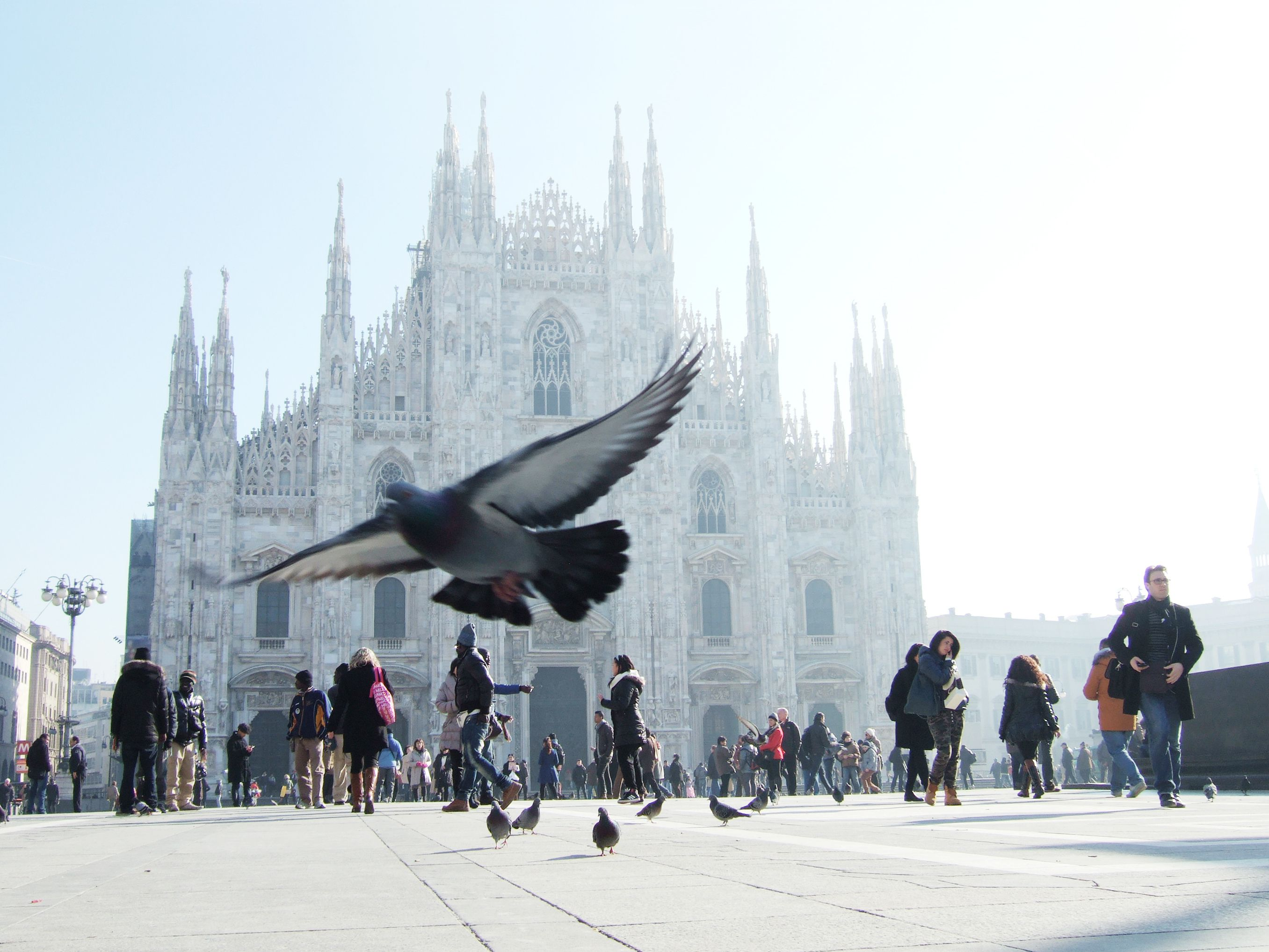 Hotel Baviera in Milan - Book a luxury hotel near from