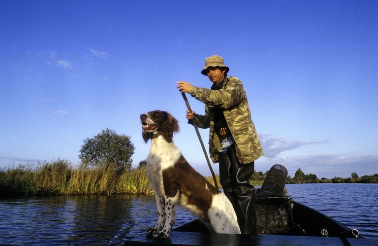 Fisherman and dog on boat in marsh