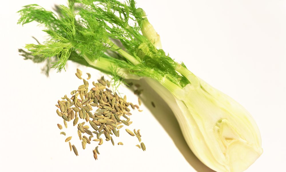 Lactogenic Foods. Foods That Can Increase The Amount Of Breast Milk. Fennel