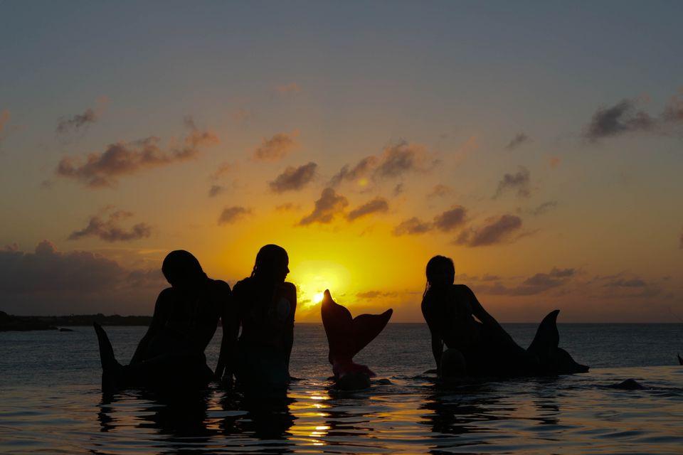 Mermaids at dusk