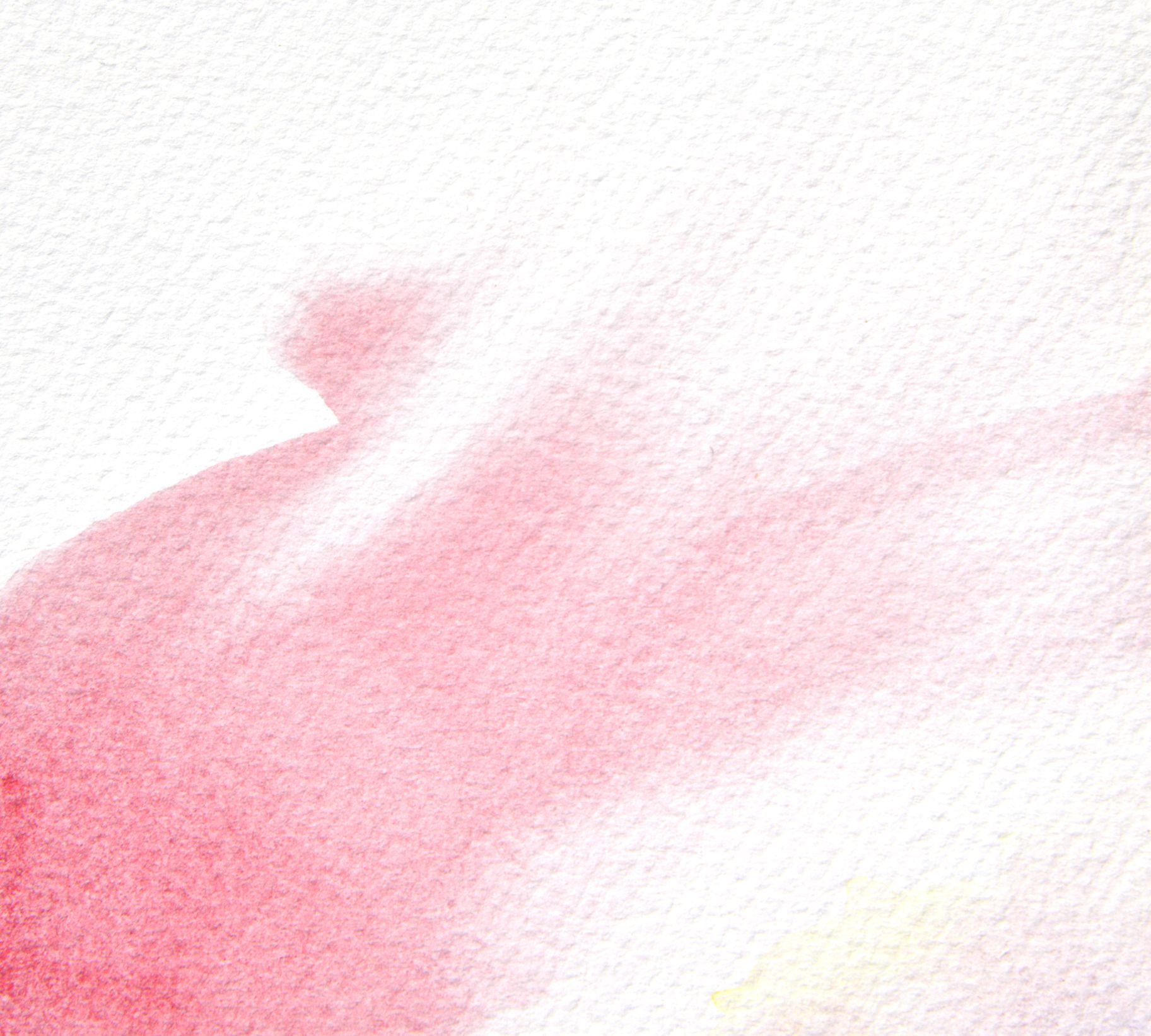 watercolor paper Check out creative inspirations from our contributing artists.