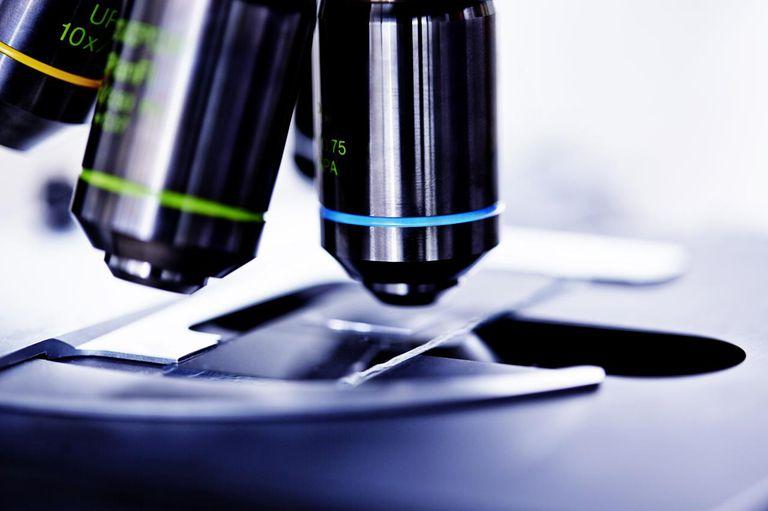 Close-up of laboratory microscope