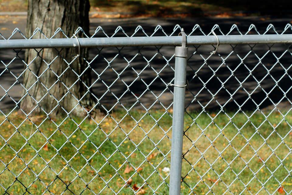 My picture shows why homeowners often wish to disguise chain-link fencing.