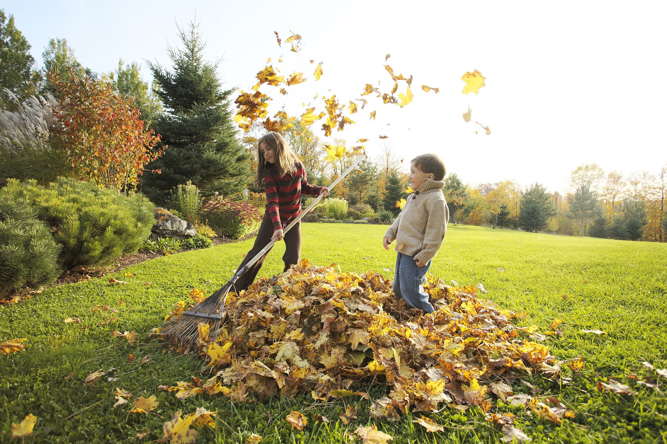 6 steps to prepare your lawn for winter