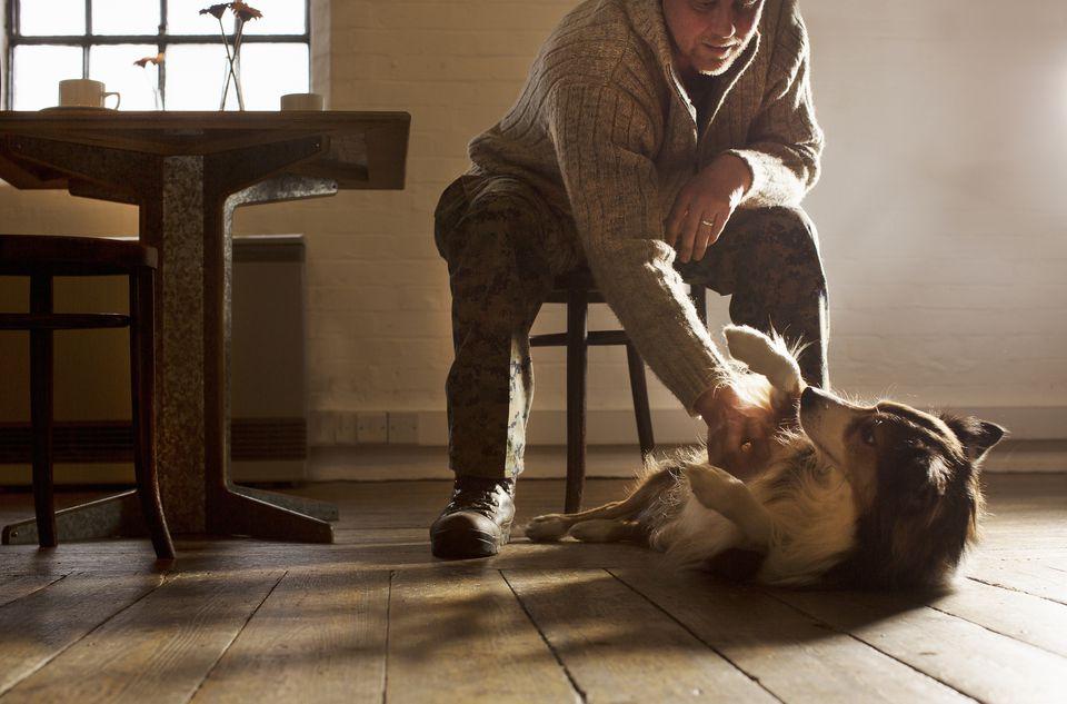 man rubbing dog's belly