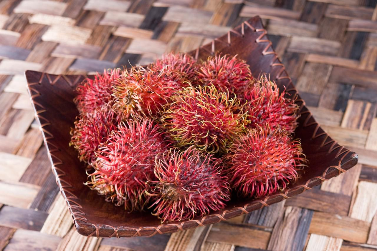 all about the tropical fruit rambutan