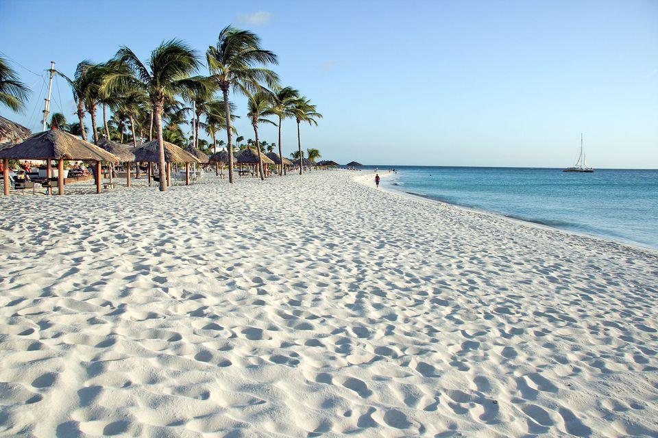 Aruba Rentals On Palm Beach