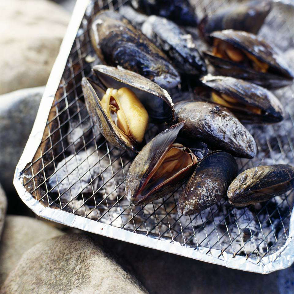 Fresh Mussels on the Grill